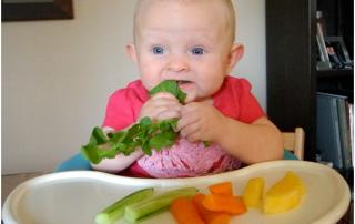 Taller introducción alimentos solidos