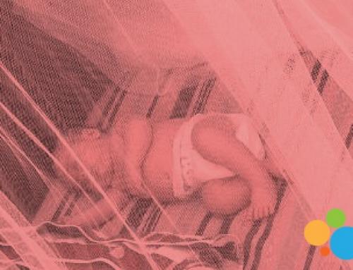 Exogestación: necesidades del bebé, la mujer-madre y la familia en el postparto